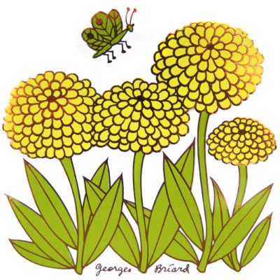 yellow chrysanthemum flowers with green butterfly tile